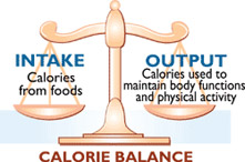 Balance Your Calorie Intake
