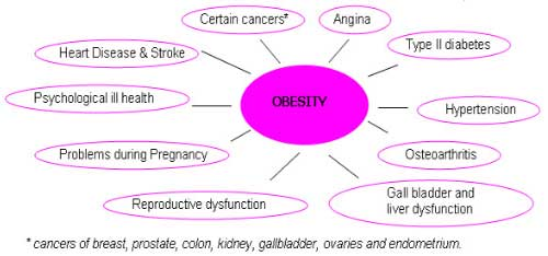 Health Problems: Health Problems From Obesity